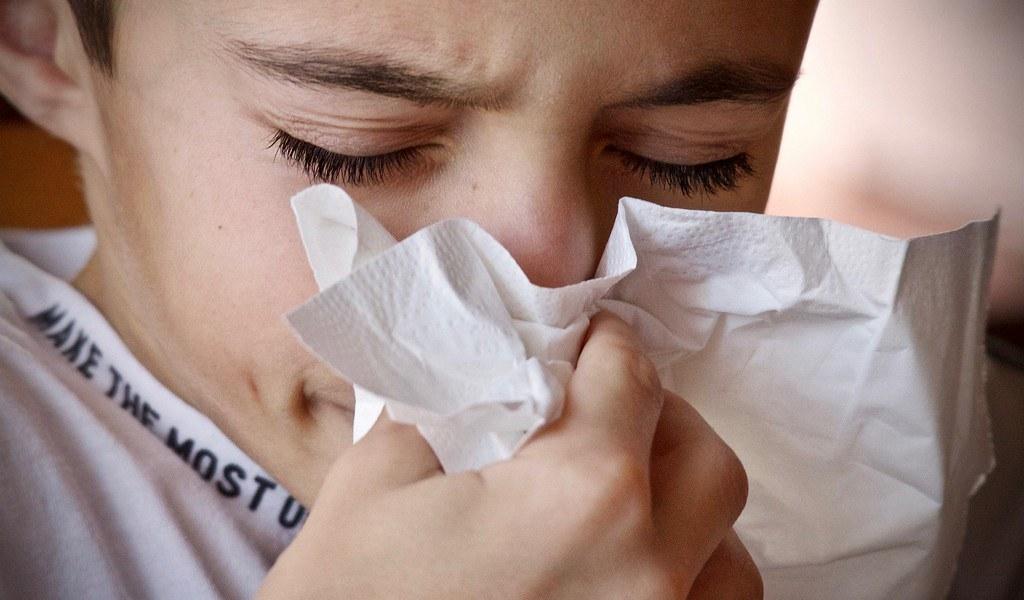un-insecte-pour-soulager-les-allergies-en-Europe