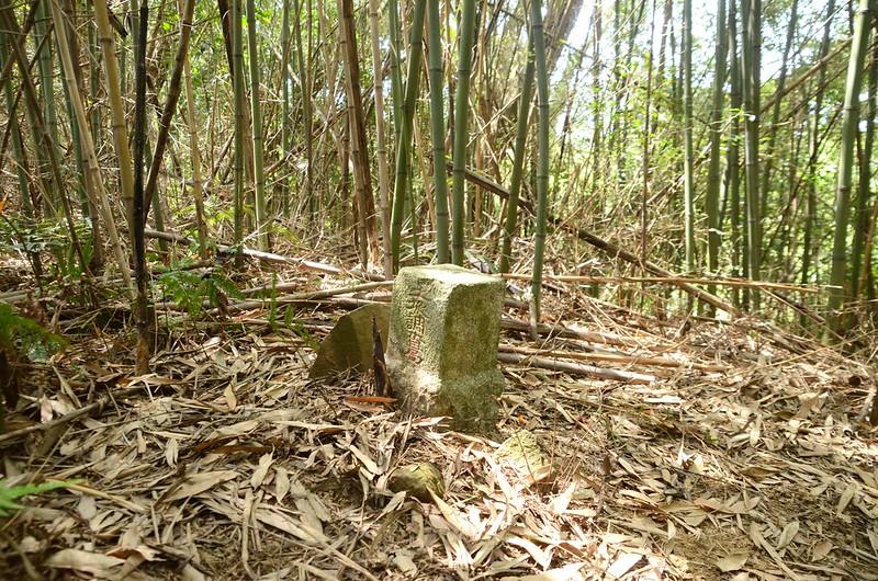 老雞隆山冠字山(24)土地調查局圖根點(Elev. 299 m)
