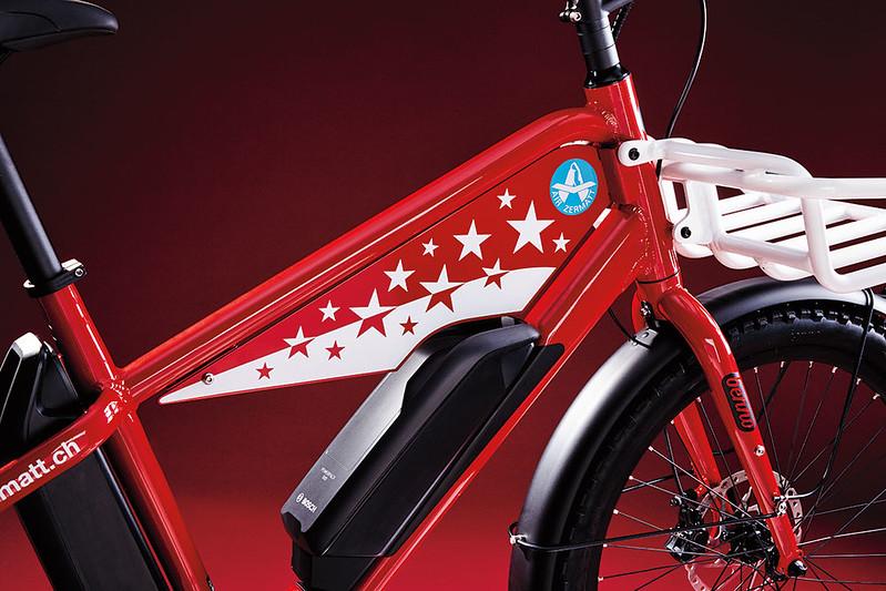 Benno Bikes Boost E Air Zermatt editionGlamour Detail Tank Plate 1