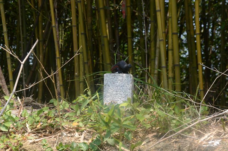 茄苳坑冠字高(20)土地調查局圖根點(Elev. 338 m) 2