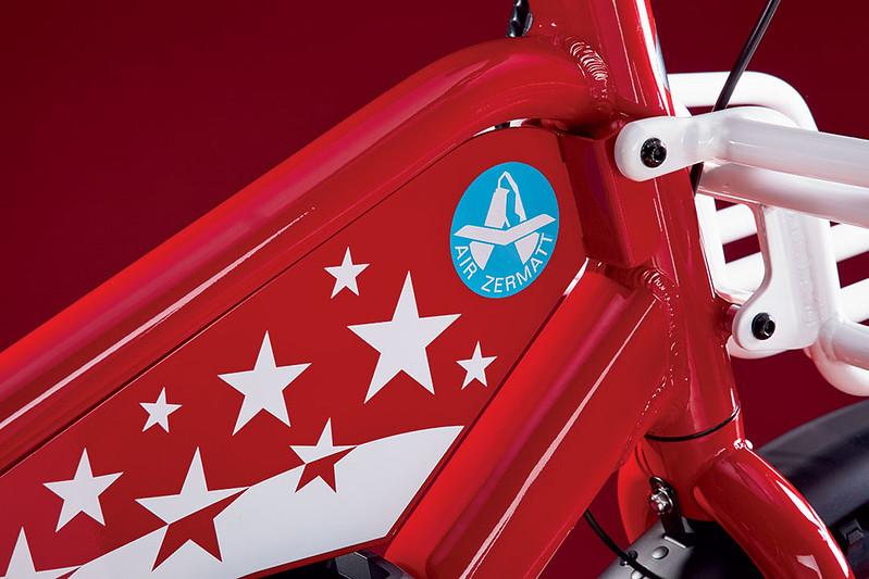 Benno Bikes Boost E Air Zermatt edition Glamour Detail Tank Plate 2