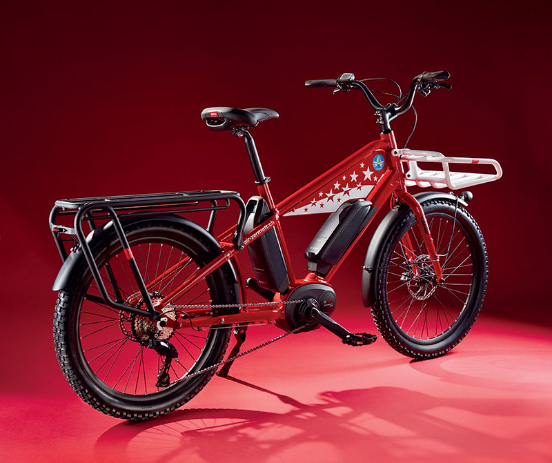 Benno Bikes Boost E Air Zermatt edition Glamour Bike