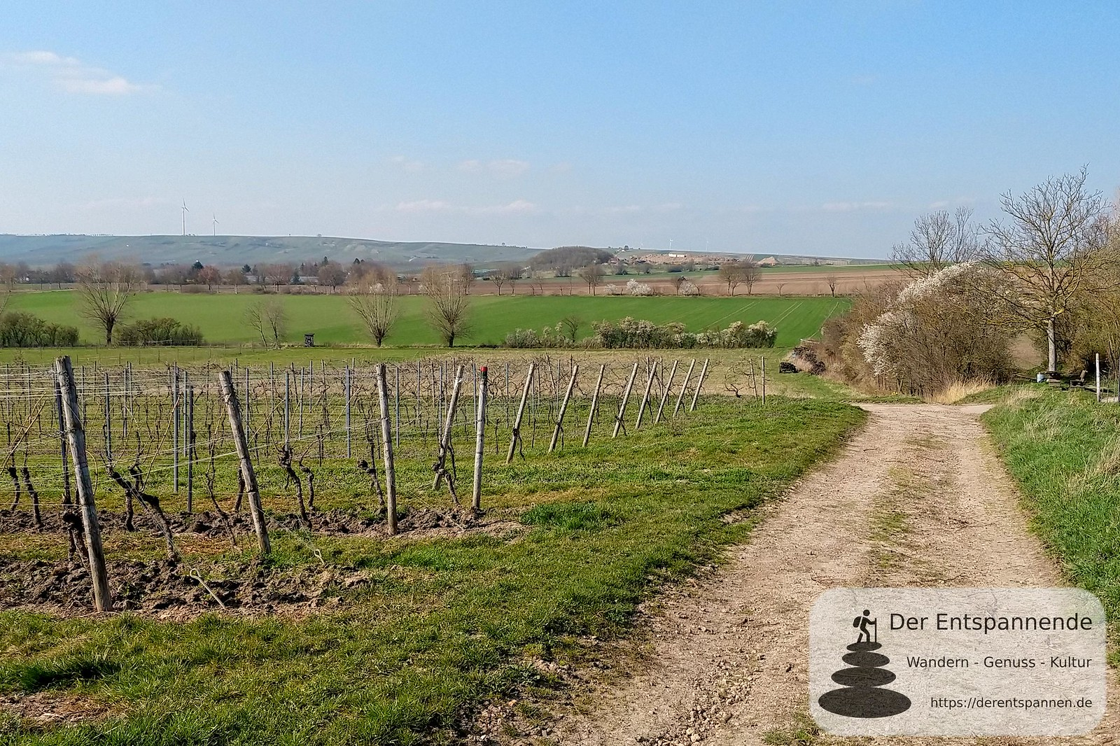 Blick auf Langenbacher Graben (12Selzbogen im März)