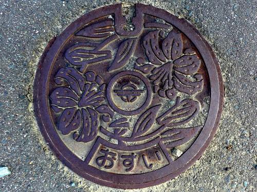 Munakata Fukuoka, manhole cover 2 (福岡県宗像市のマンホール2)