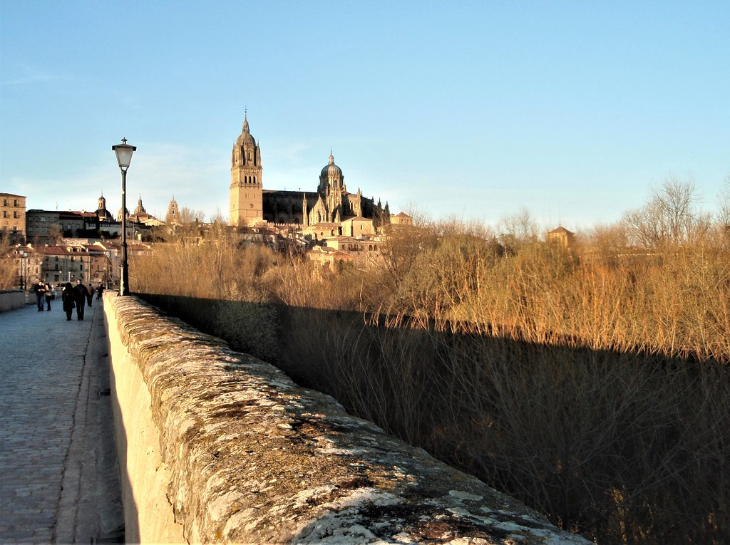 Salamanca desde el puente romano.
