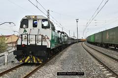 Tren del Tambor