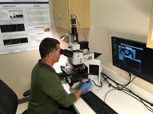 Byron Cheatham uses the CytoViva microscope system.