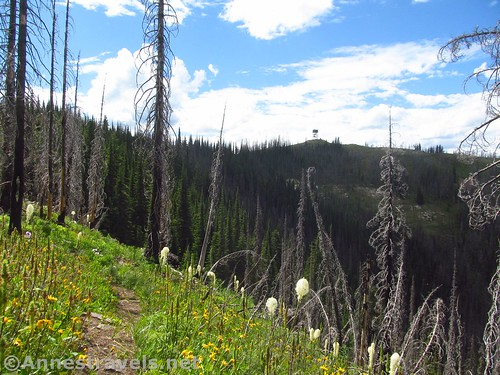 The Berray Mountain Fire Lookout from afar, Cabinet Mountains Wilderness, Montana