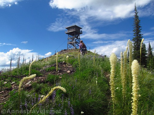 The final push up to the Berray Mountain Lookout, Cabinet Mountains Wilderness, Montana