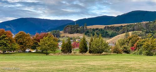 saxtonfields autumn myhouse nelson nelsonprovince newzealand