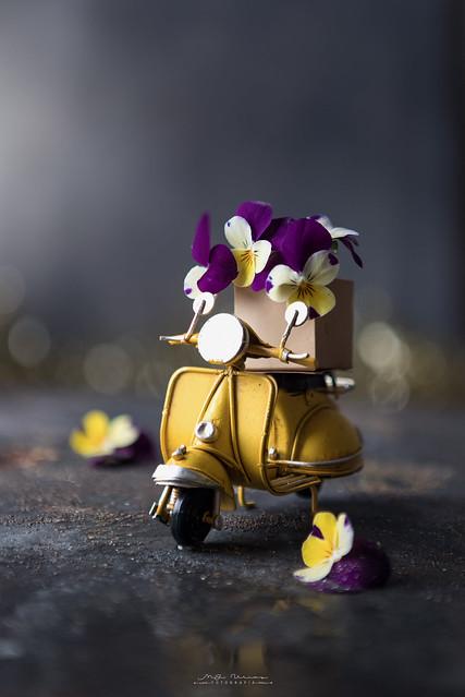 """Flowers transport"""