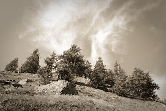 Mountain in sepia