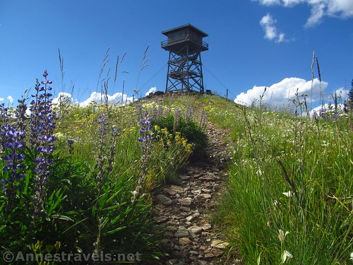 Approaching the Berray Mountain Lookout, Cabinet Mountains Wilderness, Montana