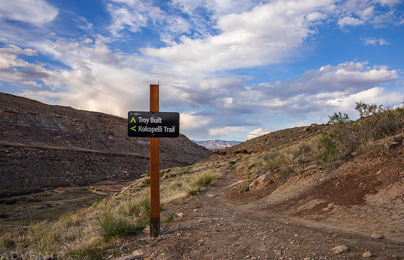 Troy Built Trail
