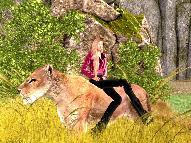 Safari Park -Desiree and Her Friend Elsa the Lioness