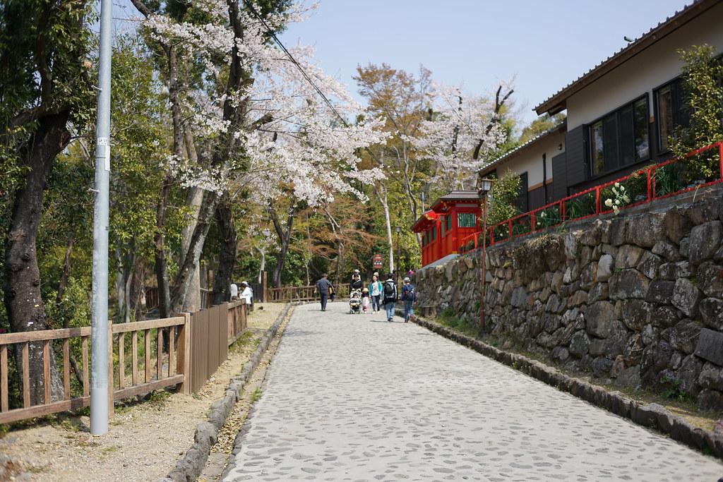 神社から犬山城へ