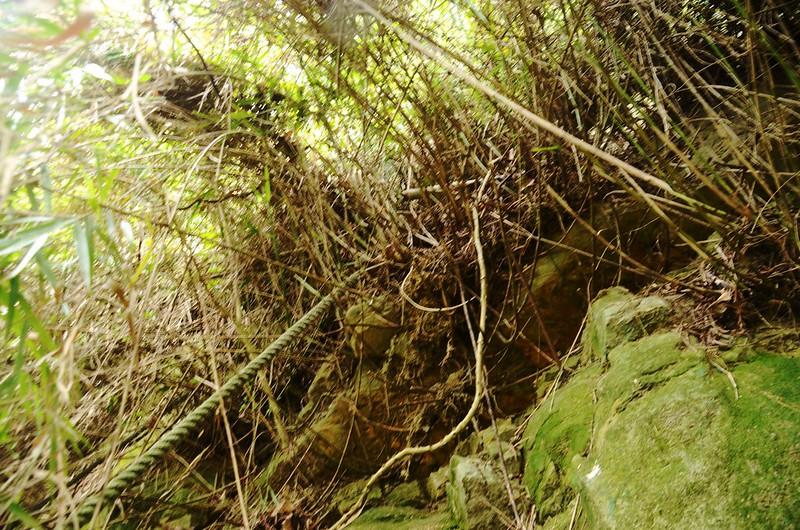 石觀音山峭壁拉繩段 (3)