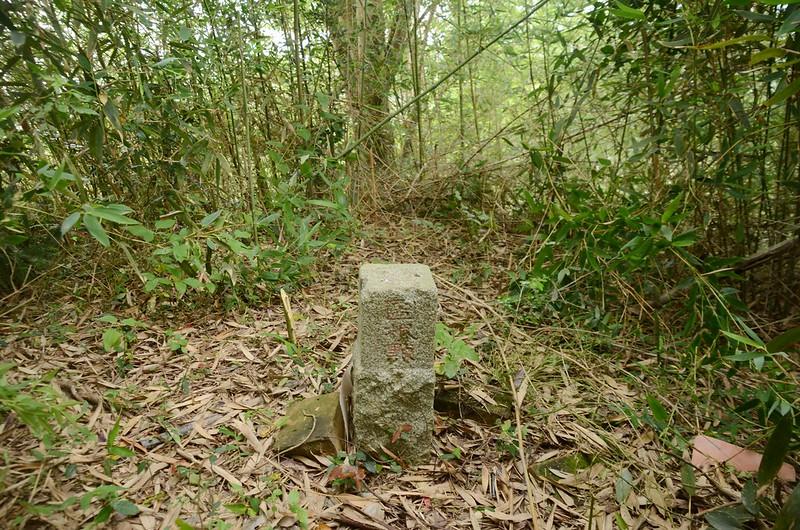 維祥山(鶴岡山)冠字渡(10)土地調查局圖根點(Elev. 173 m)