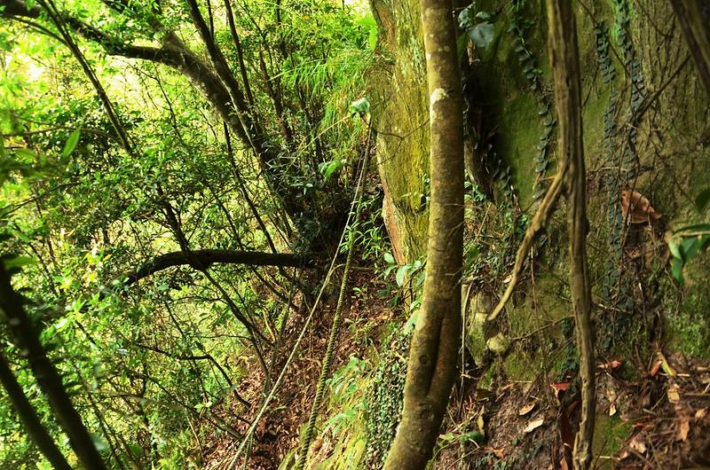 石觀音山峭壁拉繩段 (4)