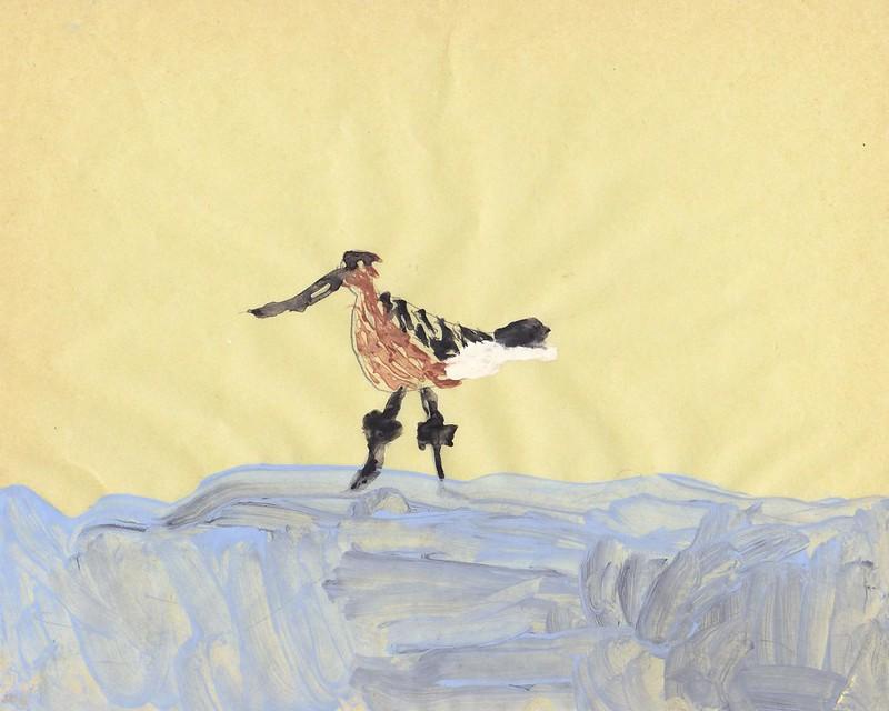 Godwit by Georgina Ravine, aged 8.