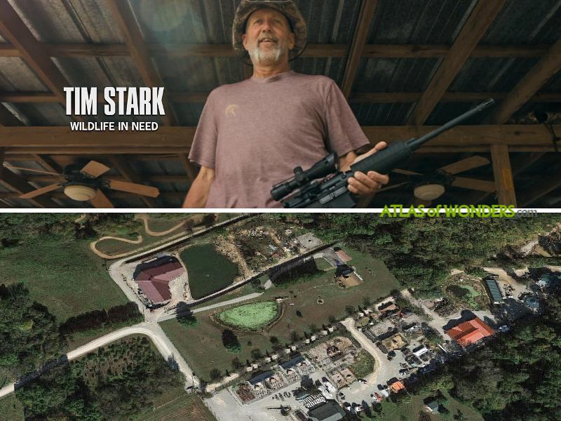 Tim Stark Wildlife in Need