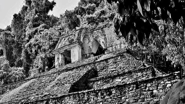 MEXICO, Chiapas,  Historisches Highlight - die Mayastätte Palenque , 19679/12593