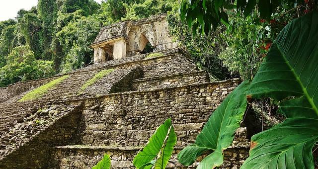 MEXICO, Chiapas,  Historisches Highlight - die Mayastätte Palenque , 19680/12594