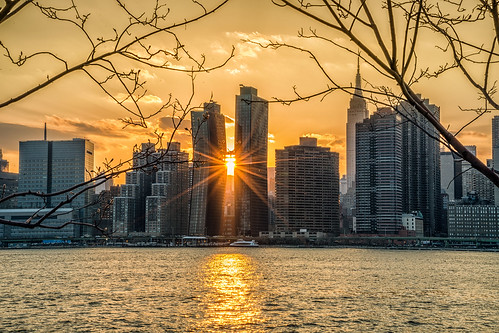 sunset nyc newyork trees skyscrapers cityscape skyline richborder rich border