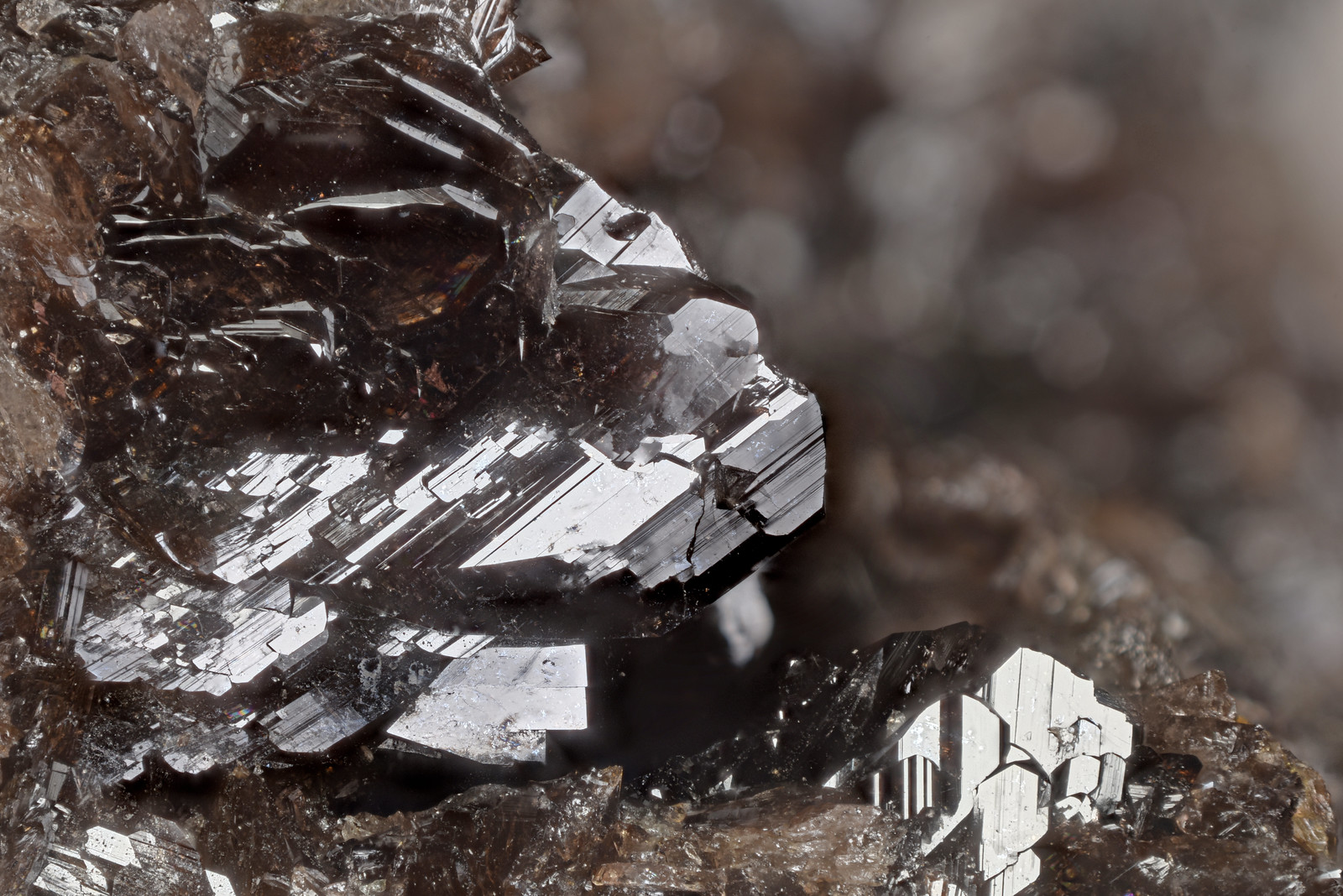 鉄斧石 / Axinite-(Fe)