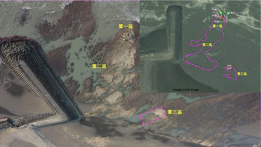 大潭藻礁G1區礁體受損分區與柴山多杯孔珊瑚受損相關位置圖。第三區標示的粉紅色點線方框為4月06日觀測到「東坪8號」坐底位置。圖片提供:陳昭倫