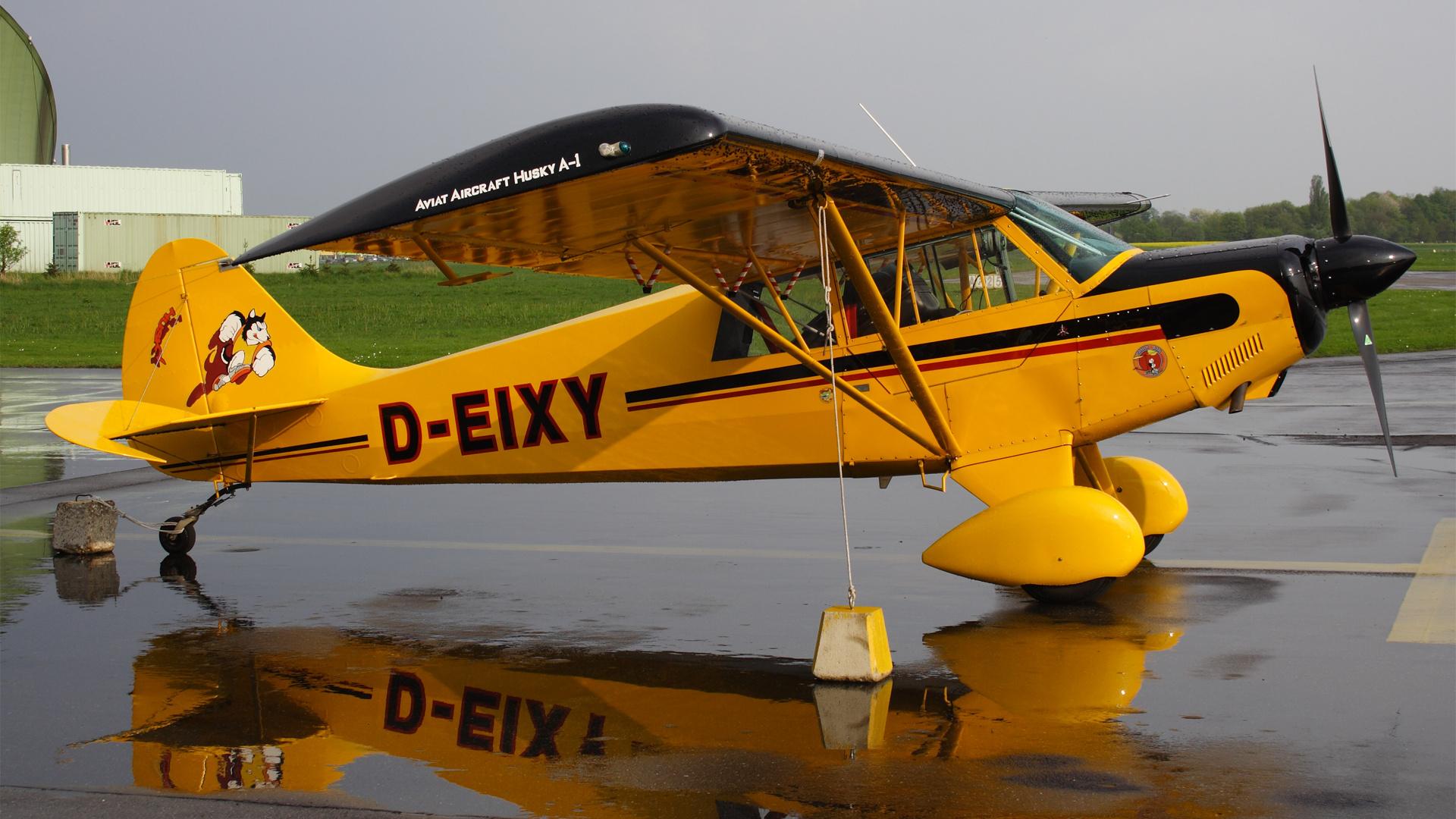 D-EIXY-1 PA18 ESS 200904