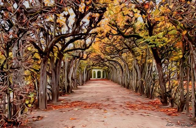 Herbst in der Bayreuther Eremitage