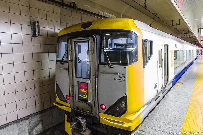 Tren limited express Wakashio en el andén 1 de la línea Keiyo