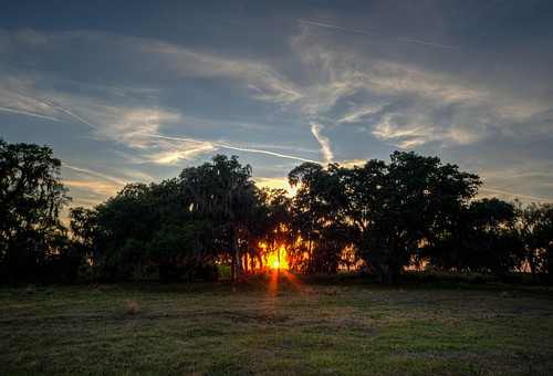 landscape rural field sun sunset country florida parrish parrishflorida floridasunset