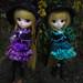Lunaria et Solaria