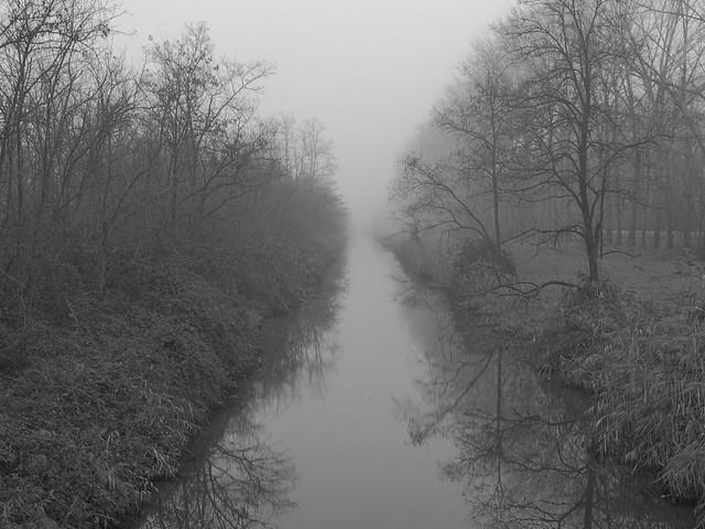 Foggy day.