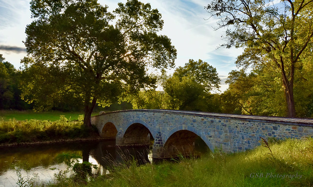 Burnside's Bridge and the Witness Tree, Antietam National Battlefield Park, MD