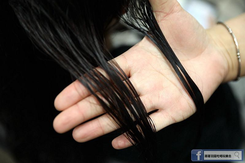 Bravo Hair Salon 士林美髮沙龍213