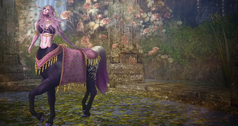 Wandering Into Wonder-  Queensgarden