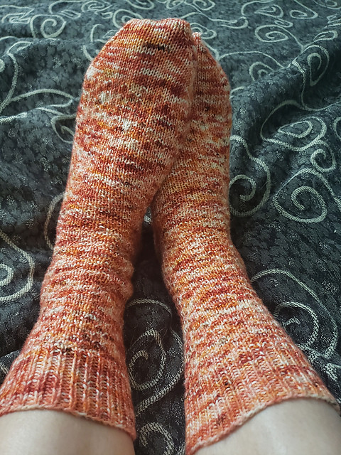 Lani finished a pair of Erica Lueder's Hermione's Everyday Socks