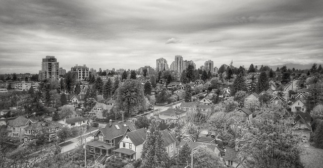 New Picture, Old Neighbourhood