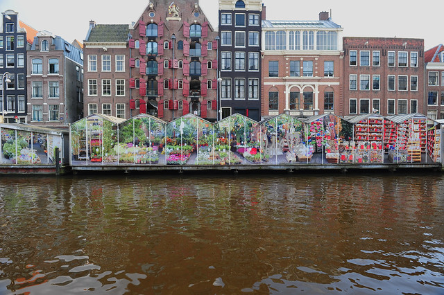 Amsterdam, Netherlands 267