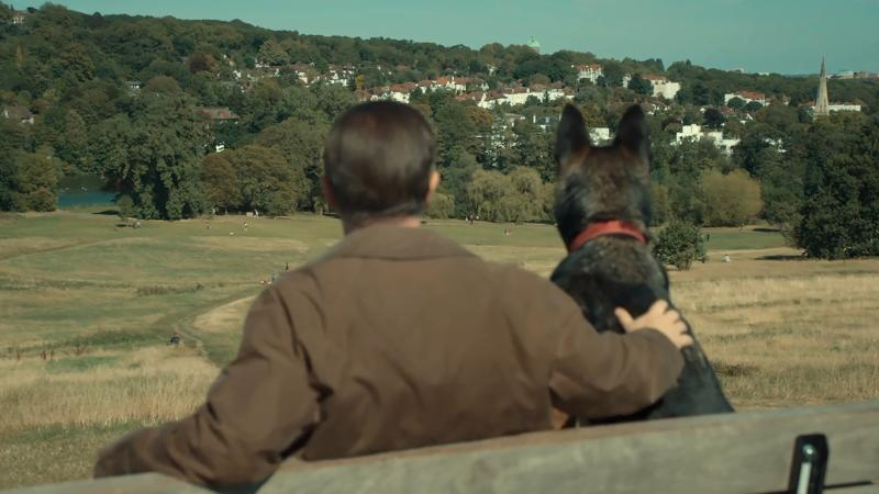 Ricky Gervais with his dog sitting on a bench overlooking London from a park