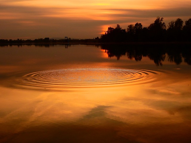 Ripples on a pond therapy 💧⚛️