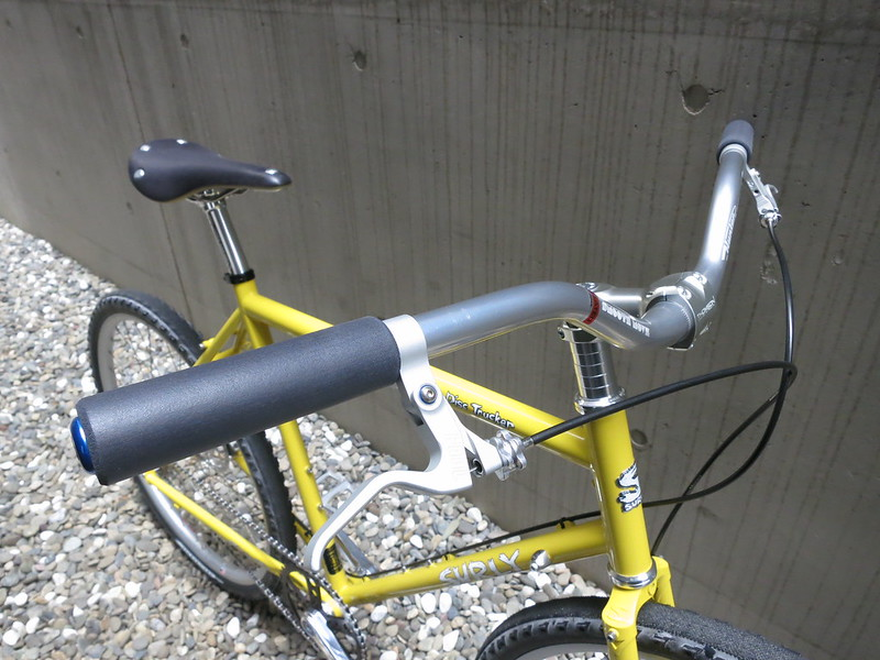 SURLY Disc Trucker SS Front