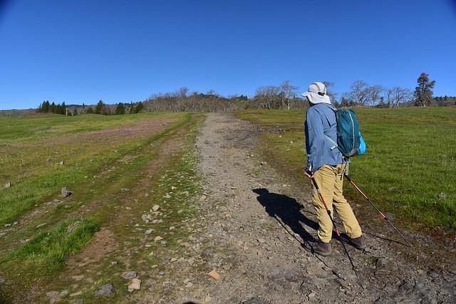 Catherline Creek Loop Hike