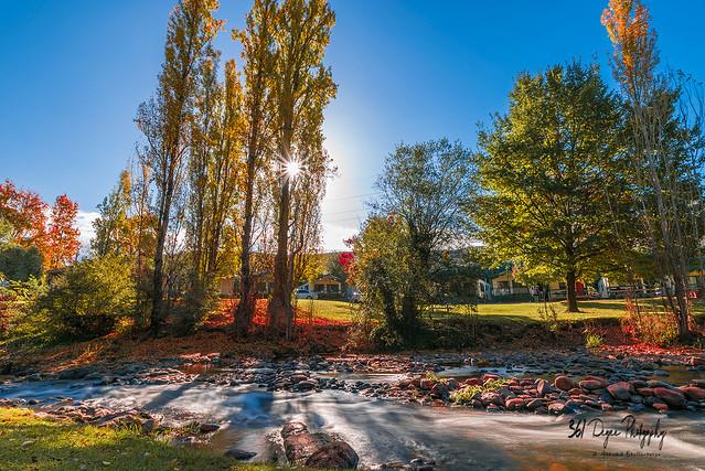 Fall Color at Bright, Victoria, Australia
