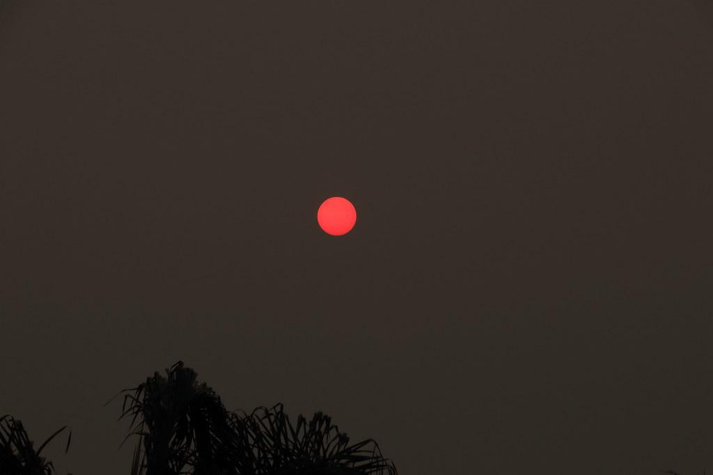 Bushfire Sun