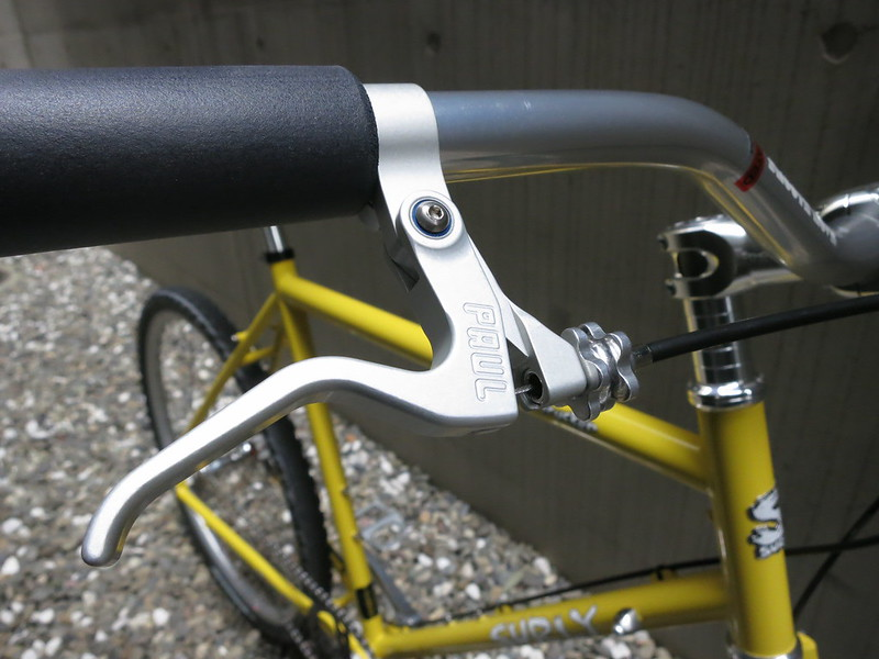 SURLY Disc Trucker SS Lever