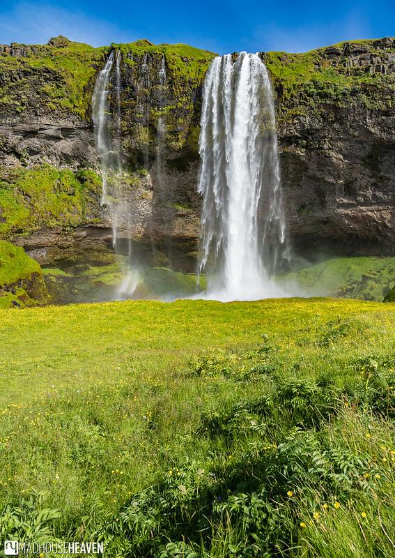 Iceland - 5954